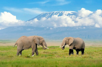 climbing-kilimanjaro-featured